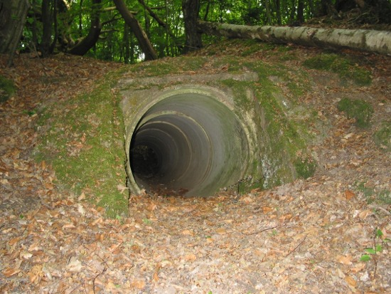 Image of the mouth of the  Escape Tunnel Ditchling Auxiliary Unit Hide out